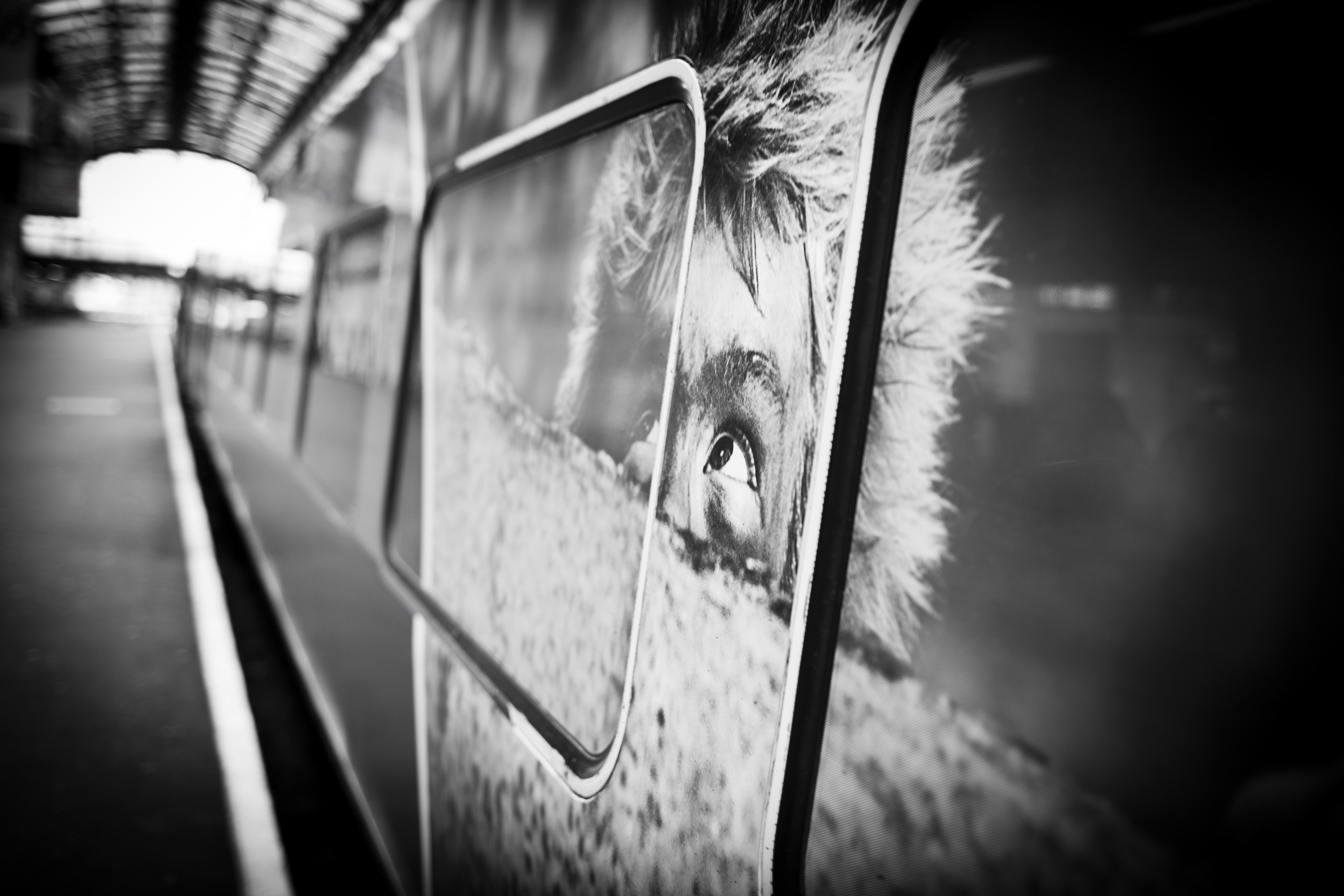 TransPennine train wraparound